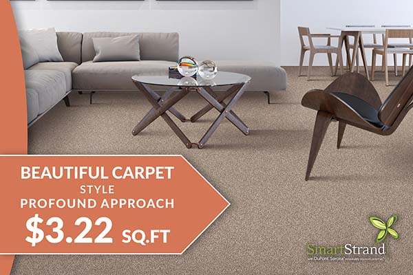 Flooring sale going on now! Profound approach carpet starting at $3.22 sq.ft. – Only at Floor Express Abbey Carpet in Tumwater, Washington